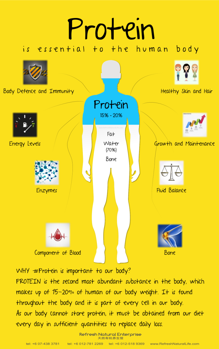 about-protein-johor-batu-pahat-organic-products-organice-cafe-food-meal-lunch-dinner-refresh-natural-%e5%85%b3%e4%ba%8e%e8%9b%8b%e7%99%bd%e8%b4%a8-%e6%9f%94%e4%bd%9b-%e5%b3%87%e6%a0%aa%e5%b7%b4