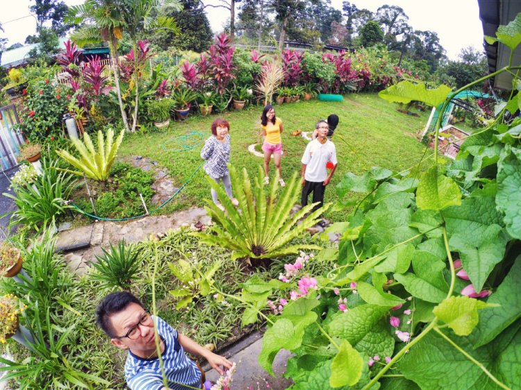 Kota Tinggi Tai Hong Johor Malaysia 52 Farm Wu Er Fan Steven Ling Jenny Lew Pinky Ning Effye Ang Raymond Ong Breakfast Oragnic Food Flower and Beautiful Garden Effye Media Online Adverti