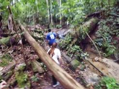 山里的故事 峇株巴辖 龙华山庄 后山 Gunung Puncak Batu Pahat Johor Malaysia Raymond Ong A16