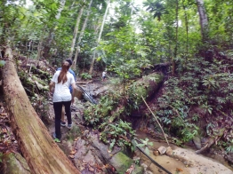 山里的故事 峇株巴辖 龙华山庄 后山 Gunung Puncak Batu Pahat Johor Malaysia Raymond Ong A17