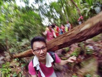 山里的故事 峇株巴辖 龙华山庄 后山 Gunung Puncak Batu Pahat Johor Malaysia Raymond Ong A18