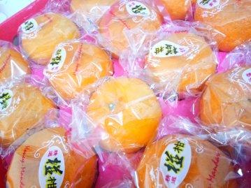 Raymond Ong Effye Ang Family Gathering Chinese Orange Chinese New Year 2018 农历新春2018 柑 C014
